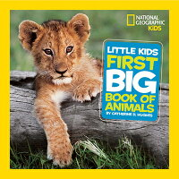 Little_Kids_First_Big_Book_of