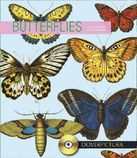 Butterflies_With_Doverpictura