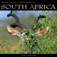 South_Africa_Safari