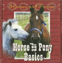 Horse_and_Pony_Basics