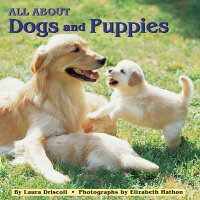 All_about_Dogs_and_Puppies