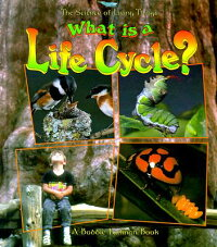 What_Is_a_Life_Cycle?