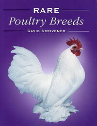 Rare_Poultry_Breeds