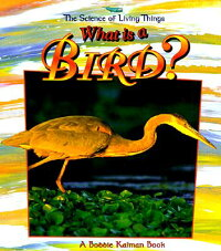 What_Is_a_Bird?