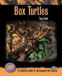 Box_Turtles