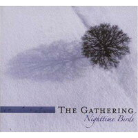 【輸入盤】NighttimeBirds(Sped)[Gathering]