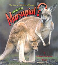 What_Is_a_Marsupial?