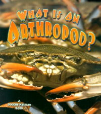 What_Is_an_Arthropod?