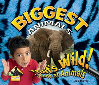 Biggest_Animals