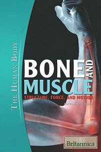 Bone_and_Muscle:_Structure,_Fo