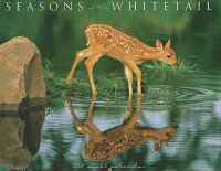 Seasons_of_the_Whitetail_Calen