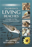 Florida's Living Beaches: A Guide for the Curious Beachcomber