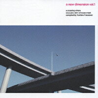 a_new_dimension_vol.1