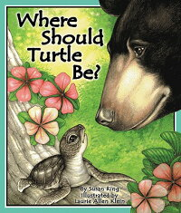 Where_Should_Turtle_Be?