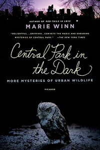 Central_Park_in_the_Dark:_More