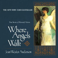 Where_Angels_Walk