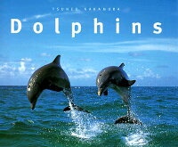 DOLPHINS(P)