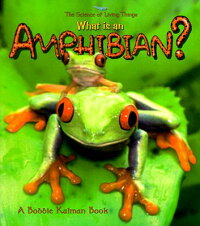 What_Is_an_Amphibian?