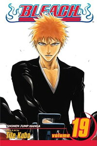 Bleach,_Volume_19