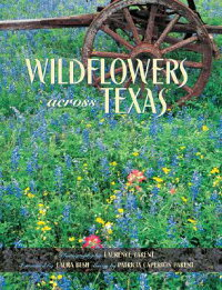 Wildflowers_Across_Texas