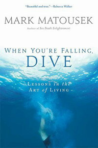 The_When_You're_Falling,_Dive: