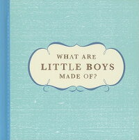 What_Are_Little_Boys_Made_Of?