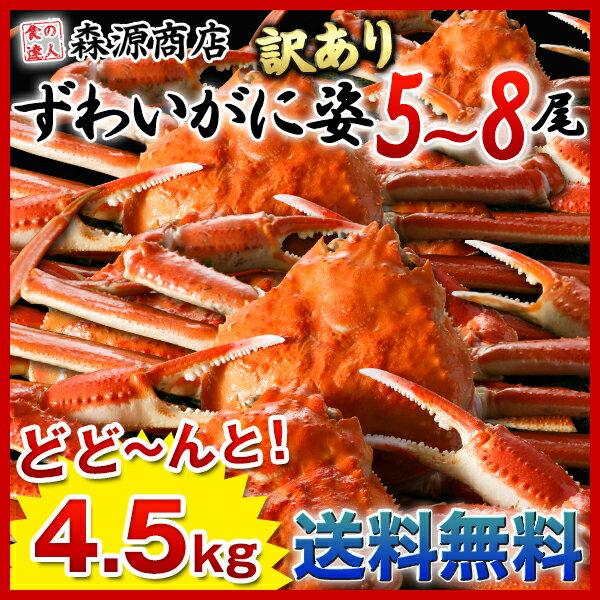 カニ かに 蟹 / 姿ずわい蟹 計4.5kg 5〜8尾 ズワイガニ詰め合わせ お歳暮/御歳暮【送料無料】《※冷凍便》