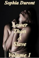 Lower Than A Slave Volume 1