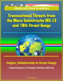 Gangs and Crime in America: Transnational Threats from the Mara Salvatrucha MS-13 and 18th Street Gangs, Origins, Relationship to Street Gangs, Federal Response, El Salvador Initiative, RICO Act