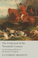 The Foxhound of the Twentieth Century - The Breeding and Work of the Kennels of England