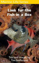 Look for the Fish in a Box