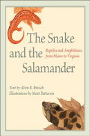 The Snake and the Salamander
