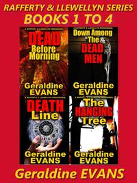 RAFFERTY&LLEWELLYNSERIESBOXEDSETBOOKS1to4BritishDetectiveSeries