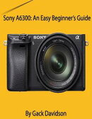 Sony A6300: An Easy Beginner's Guide