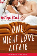 One Night Love Affair