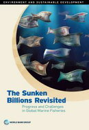 The Sunken Billions Revisited