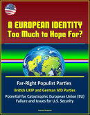 A European Identity: Too Much to Hope For? Far-Right Populist Parties, British UKIP and German AfD Parties, …