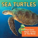 Sea Turtles: Fun Facts About Turtles of The World