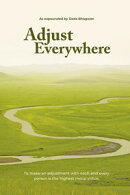Adjust Everywhere (In English)