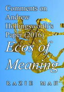 Comments on Andrew Hollingsworth's Paper (2016) Ecos of Meaning