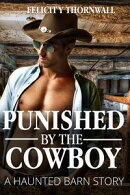 Punished by the Cowboy: a Haunted Barn story