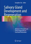 Salivary Gland Development and Regeneration