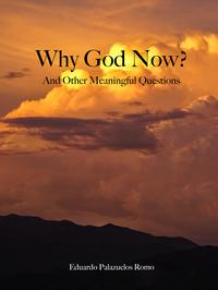 WhyGodNow?AndOtherMeaningfulQuestions