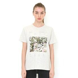 【ユニセックス】ベーシックTシャツ/ボタニカルフォト01/グラニフ(graniph)