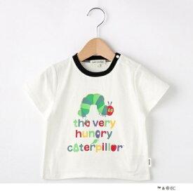 【80-110cm限定コラボ】はらぺこあおむしTシャツ/シューラルー(キッズ)(SHOOLARUE Kids)
