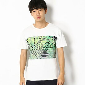 【HALB】ヤシの木プリントTシャツ/テットオム(TETE HOMME)