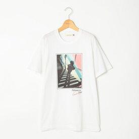 Artist Tシャツ/ノーリーズ レディース(NOLLEY'S)