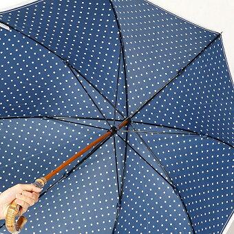 雨傘(長傘)ドット(婦人/レディース)/マッキントッシュフィロソフィー(傘・ネックウェア)(MACKINTOSHPHILOSOHPY)