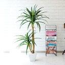 【PG014 ドラセナコンシナ H120cm【GLA-1199】/ 陶器鉢】人工観葉植物 フェイクグリーン アーティフィシャルグリーン …