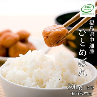 https://image.rakuten.co.jp/0141-iwasenokome/cabinet/items/hito/hito_s27000_500.jpg